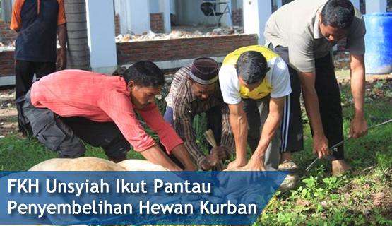 FKH Unsyiah Ikut Pantau Penyembelihan Hewan Kurban