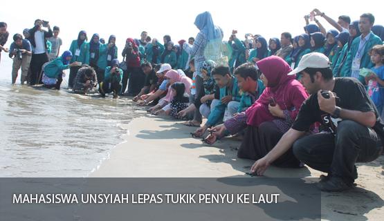 Mahasiswa Unsyiah Lepas Tukik Penyu Ke Laut