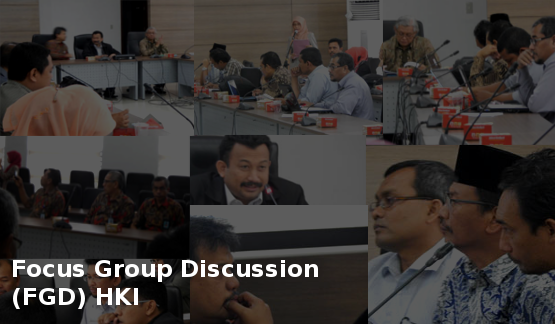 Focus Group Discussion (FGD) HKI